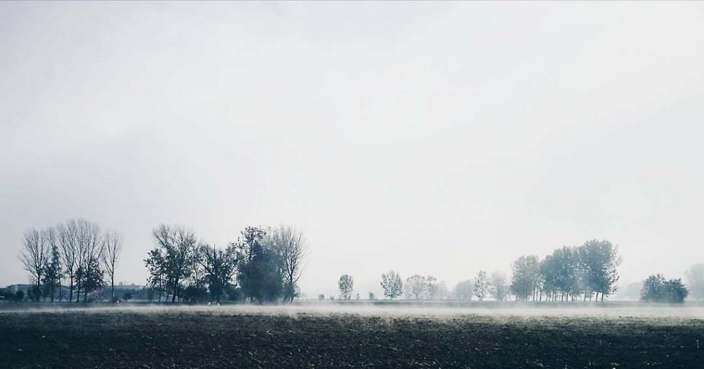 La campagna mantovana indossa un velo di nebbia come lahellip